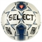 Select Team FIFA Approved - фото 4430